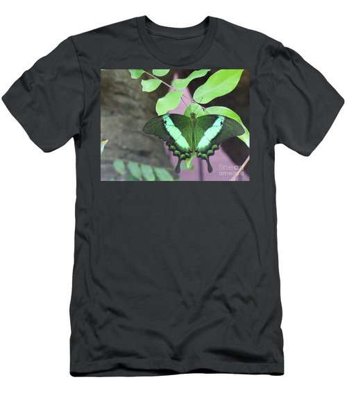 Men's T-Shirt (Slim Fit) featuring the photograph Peacock Swallowtail by Lingfai Leung