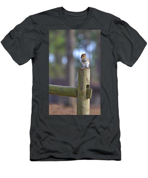 Perched Men's T-Shirt (Slim Fit) by Gordon Elwell