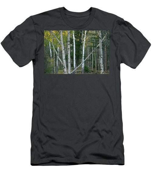 Perfection In Nature Men's T-Shirt (Athletic Fit)