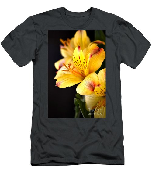 Peruvian Lily Men's T-Shirt (Athletic Fit)
