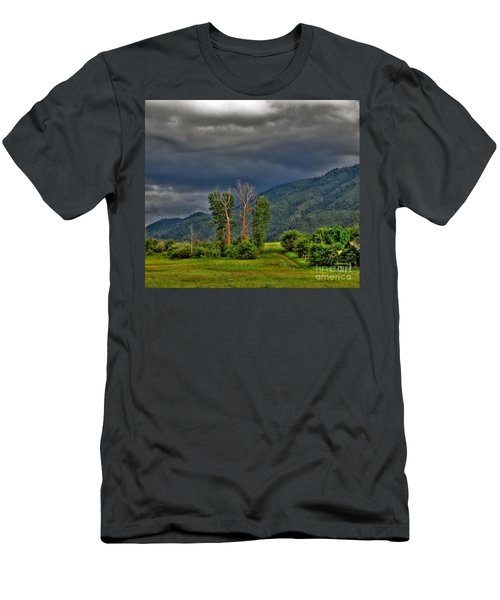 Petes Trees Men's T-Shirt (Slim Fit) by Sam Rosen