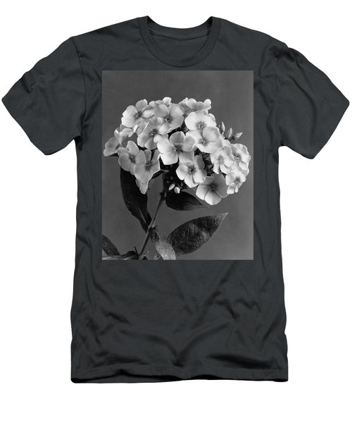 Phlox Blossoms Men's T-Shirt (Athletic Fit)