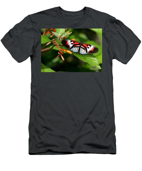 Piano Key Butterfly On Fire Bush Men's T-Shirt (Athletic Fit)