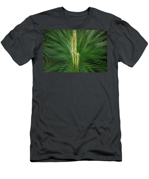 Pine Cone And Needles Men's T-Shirt (Athletic Fit)