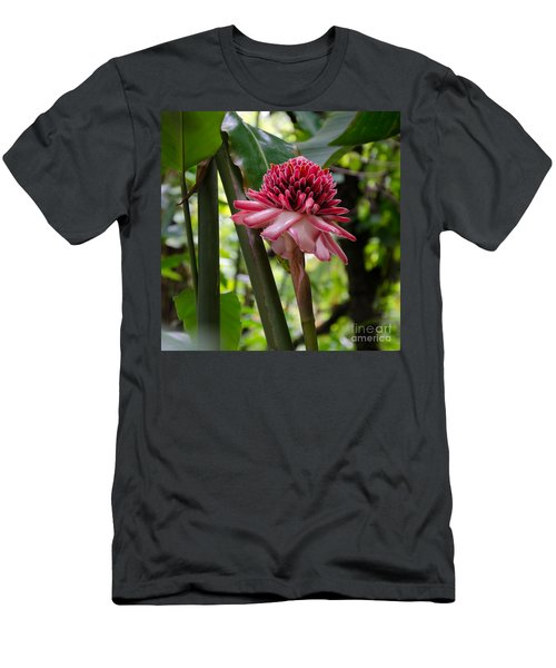 Pink Torch Ginger Men's T-Shirt (Athletic Fit)