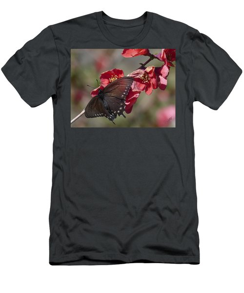 Pipevine Swallowtail And Roses Men's T-Shirt (Athletic Fit)