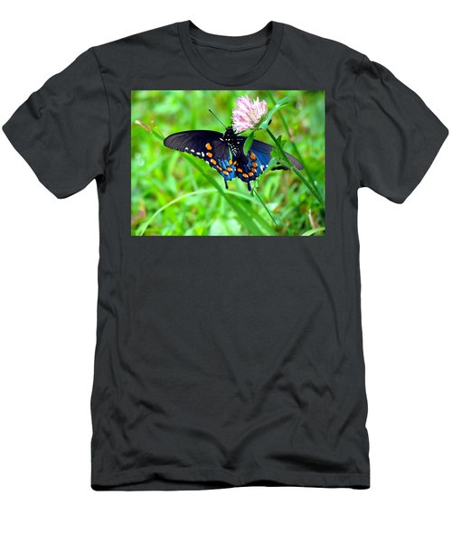 Pipevine Swallowtail Hanging On Men's T-Shirt (Athletic Fit)