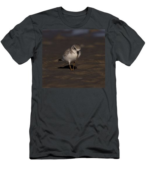 Piping Plover Photo Men's T-Shirt (Slim Fit) by Meg Rousher