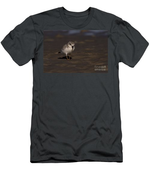 Piping Plover Photo Men's T-Shirt (Athletic Fit)