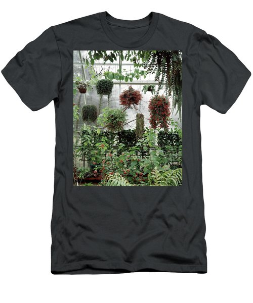 Plants Hanging In A Greenhouse Men's T-Shirt (Athletic Fit)