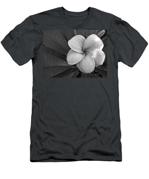 Plumeria With Raindrops Men's T-Shirt (Athletic Fit)