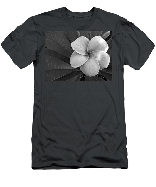 Plumeria With Raindrops Men's T-Shirt (Athletic Fit)