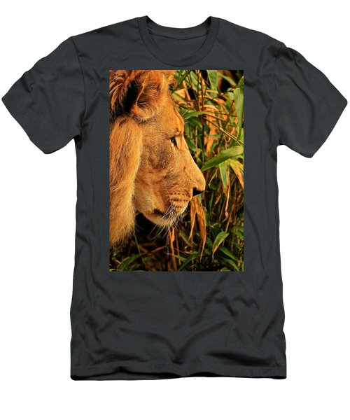 Profiles Of A King Men's T-Shirt (Athletic Fit)