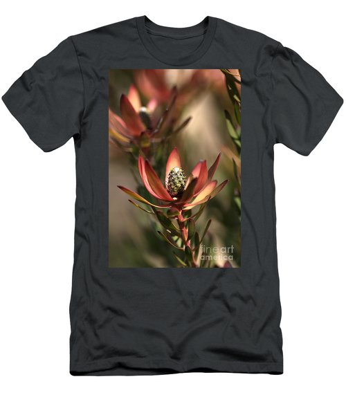 Protea  Men's T-Shirt (Athletic Fit)