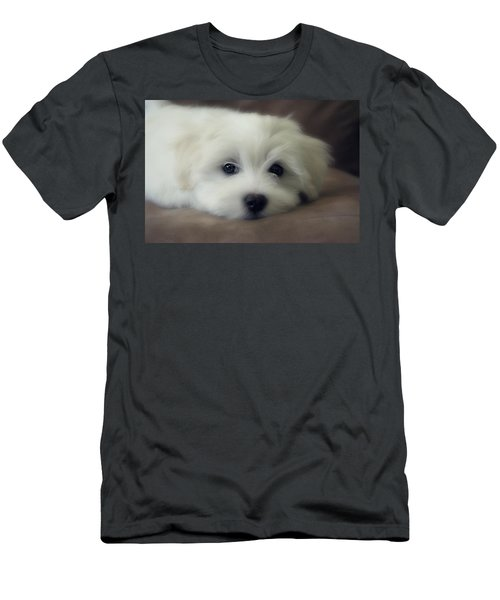 Puppy Eyes Men's T-Shirt (Slim Fit) by Melanie Lankford Photography