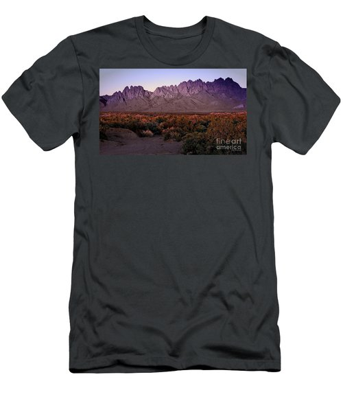Purple Mountain Majesty Men's T-Shirt (Slim Fit) by Barbara Chichester