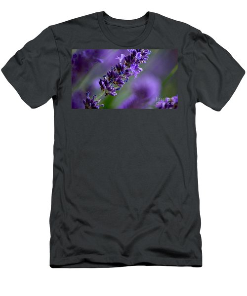 Purple Nature - Lavender Lavandula Men's T-Shirt (Athletic Fit)