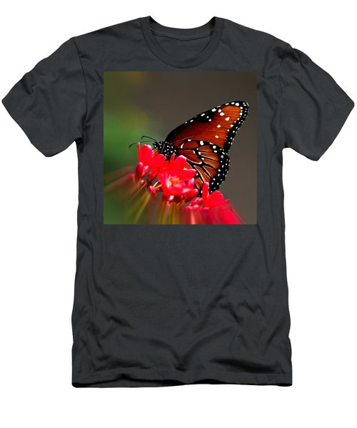 Queen Butterfly II Men's T-Shirt (Athletic Fit)