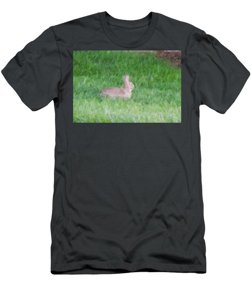 Rabbit In The Grass Men's T-Shirt (Athletic Fit)
