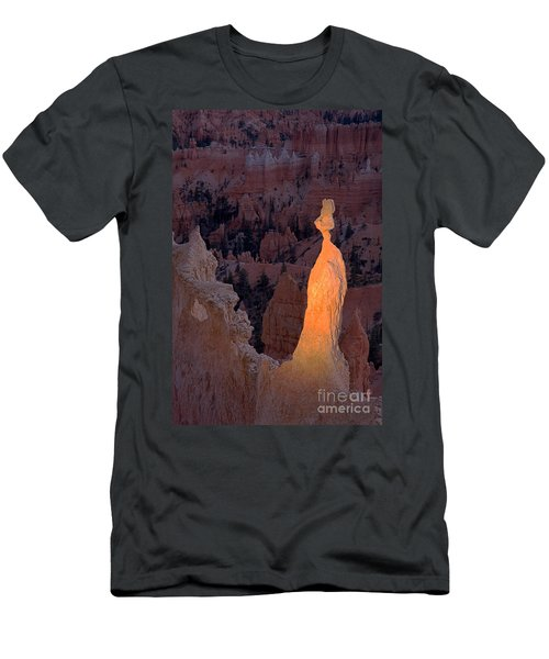 Rabbit Sunset Point Bryce Canyon National Park Men's T-Shirt (Athletic Fit)