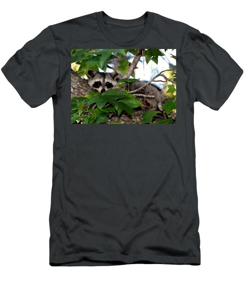 Raccoon Eyes Men's T-Shirt (Athletic Fit)