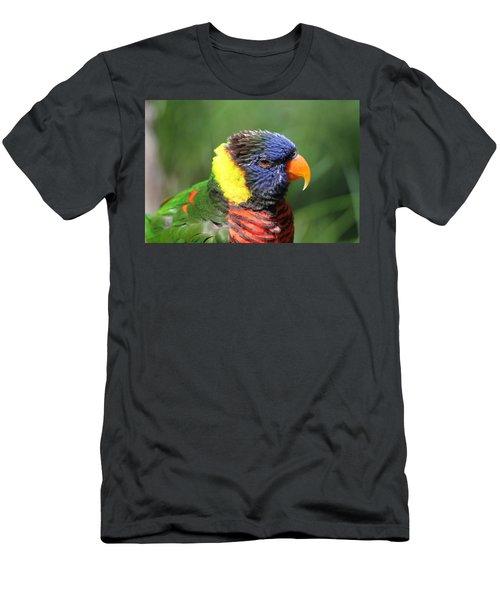 Rainbow Lorikeet Portrait Men's T-Shirt (Athletic Fit)