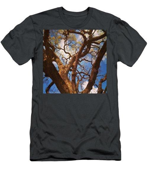 Picnic Under The Giant Oak Tree Men's T-Shirt (Athletic Fit)