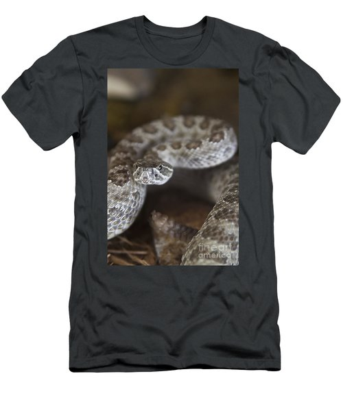 A Rattlesnake Thats Ready To Strike Men's T-Shirt (Athletic Fit)