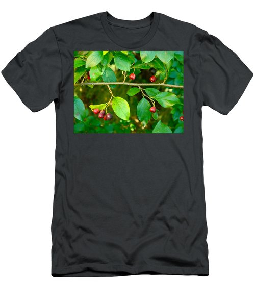 Red And Black Berries Men's T-Shirt (Athletic Fit)