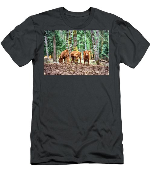 Red Angus Calves Men's T-Shirt (Athletic Fit)