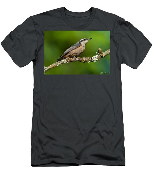 Red Breasted Nuthatch In A Tree Men's T-Shirt (Athletic Fit)