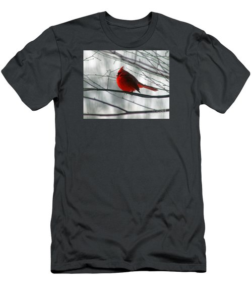 Red Cardinal On Winter Branch  Men's T-Shirt (Athletic Fit)