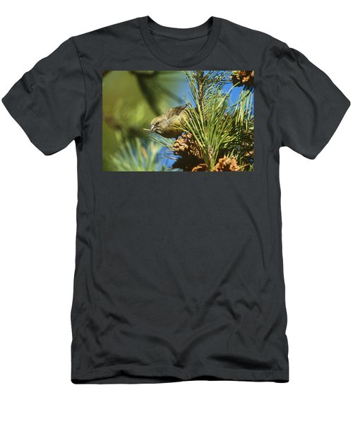 Red Crossbill Eating Cone Seeds Men's T-Shirt (Athletic Fit)