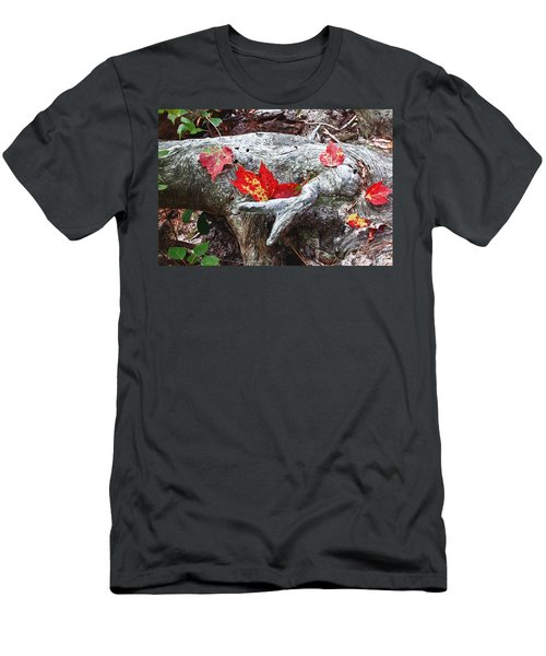Red Fall Against Grey Men's T-Shirt (Athletic Fit)