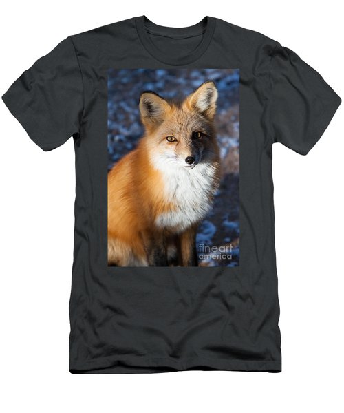Men's T-Shirt (Athletic Fit) featuring the photograph Red Fox Standing by John Wadleigh