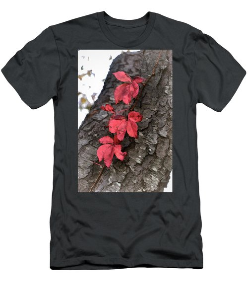 Red Leaves On Bark Men's T-Shirt (Athletic Fit)