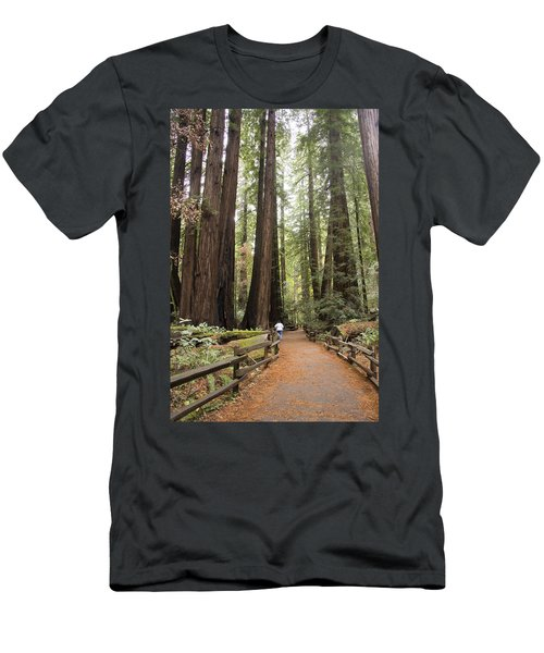 Redwood Trees Men's T-Shirt (Athletic Fit)