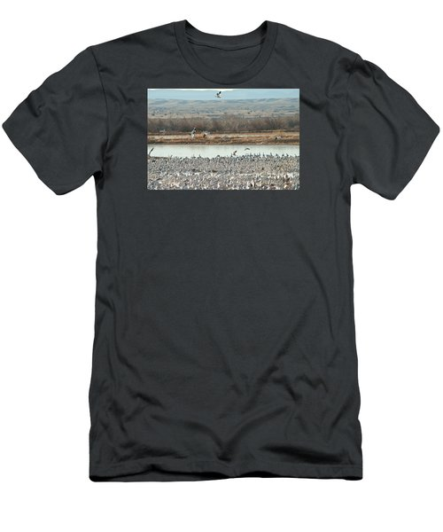 Refuge View 2 Men's T-Shirt (Slim Fit) by James Gay