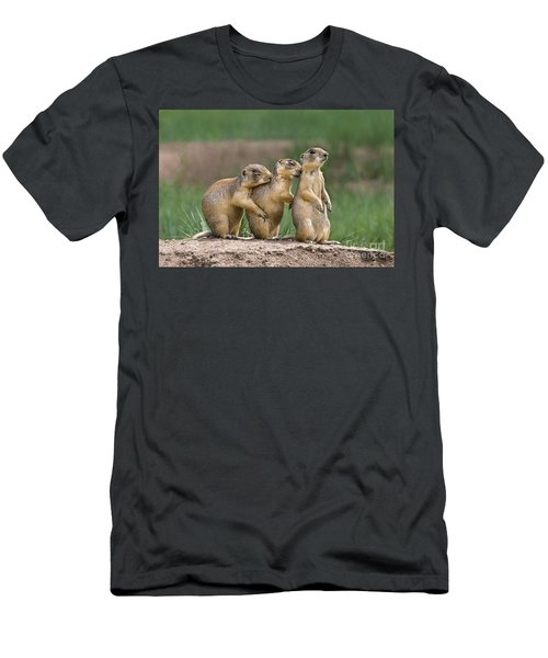 Relaxing Utah Prairie Dogs Cynomys Parvidens Wild Utah Men's T-Shirt (Athletic Fit)