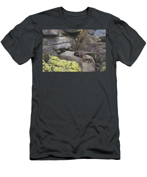 Men's T-Shirt (Slim Fit) featuring the photograph Resting Seal by Stuart Litoff