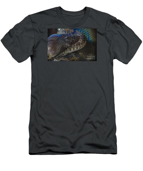 Reticulated Python With Rainbow Scales Men's T-Shirt (Athletic Fit)