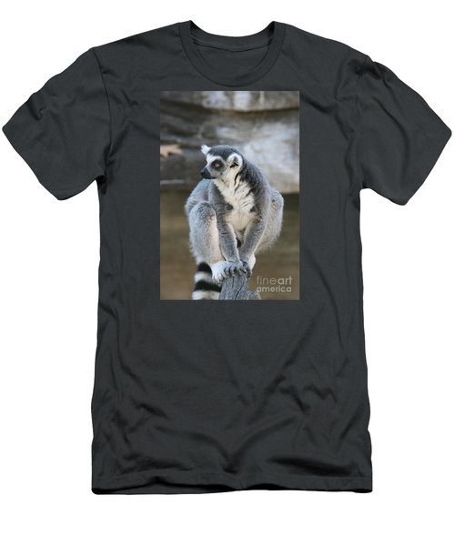 Men's T-Shirt (Slim Fit) featuring the photograph Ring-tailed Lemur #3 by Judy Whitton