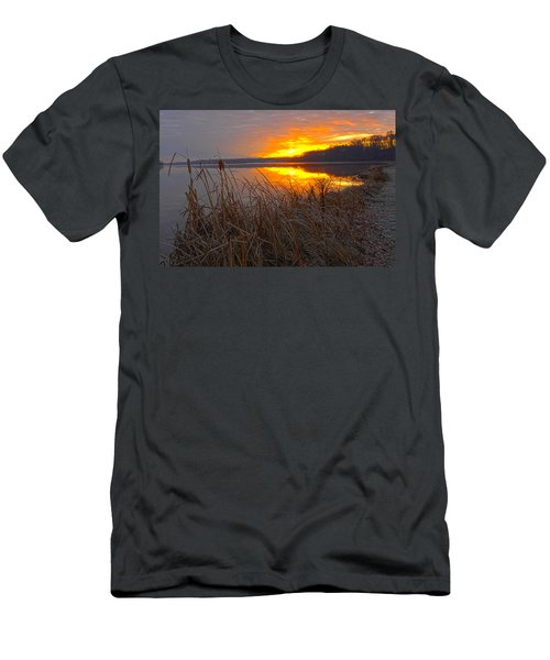 Men's T-Shirt (Slim Fit) featuring the photograph Rising Sunlights Up Shore Line Of Cattails by Randall Branham