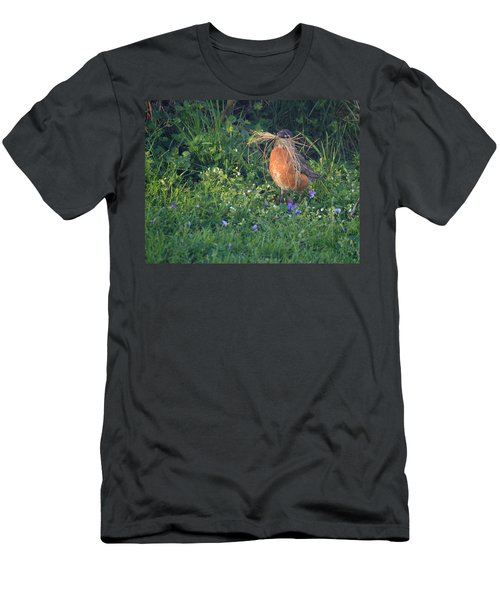 Robin Gathering For Nest Men's T-Shirt (Athletic Fit)