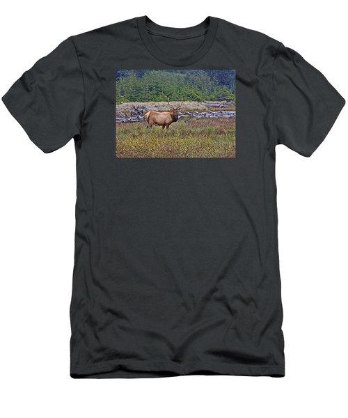 Roosevelt Elk Men's T-Shirt (Slim Fit) by Mark Alder