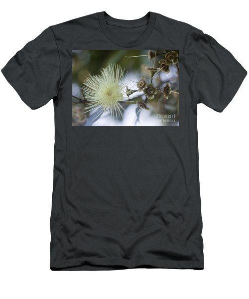 Rose Apple Blossom Men's T-Shirt (Slim Fit) by Kerryn Madsen-Pietsch
