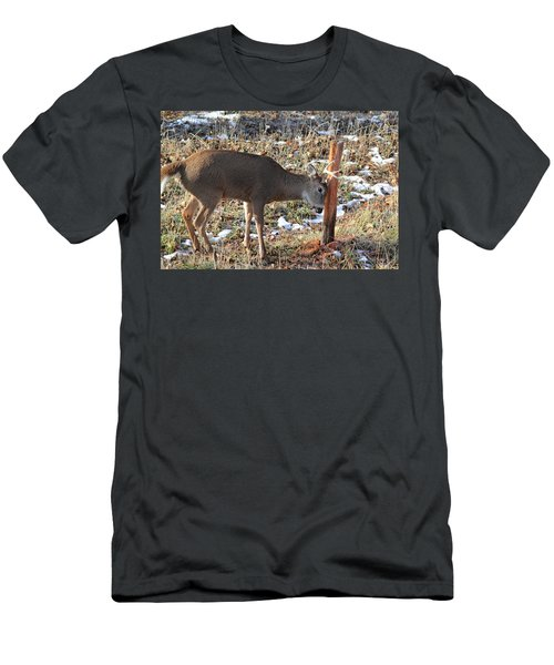 Rubbing Post Men's T-Shirt (Athletic Fit)
