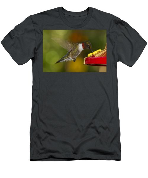 Ruby-throat Hummer Sipping Men's T-Shirt (Athletic Fit)