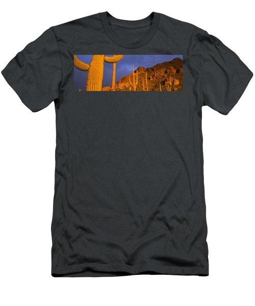 Saguaro Cactus, Tucson, Arizona, Usa Men's T-Shirt (Athletic Fit)