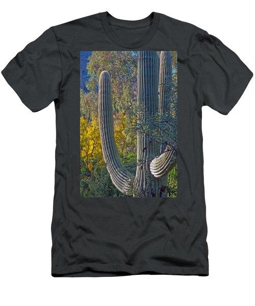Saguaro Fall Color Men's T-Shirt (Slim Fit) by Tam Ryan